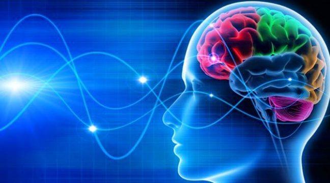 beyin-ile-bilgisayar-arasindaki-en-onemli-fark-e1489585333113-1.jpg