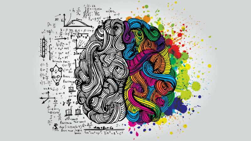 right-left-brain-genius-ss-1920-800x450.jpg