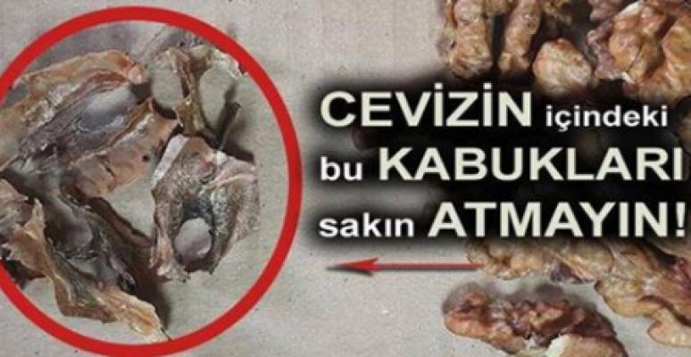 cevizin_icinden_cikan_kabugun_inanilmaz_faydasi_h763_47ba1-1.png
