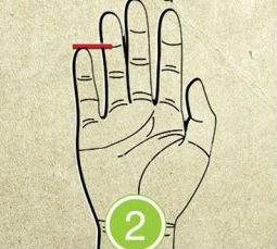 serce2.jpg