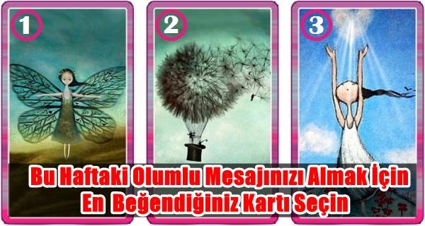 message-1.jpg