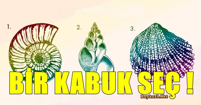 KABUK-1.jpg
