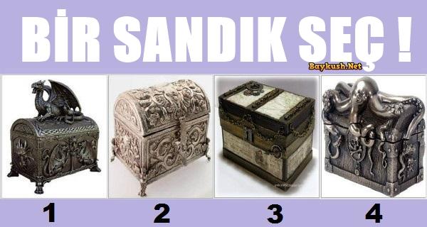 KAPAK-SANDIK-1.jpg