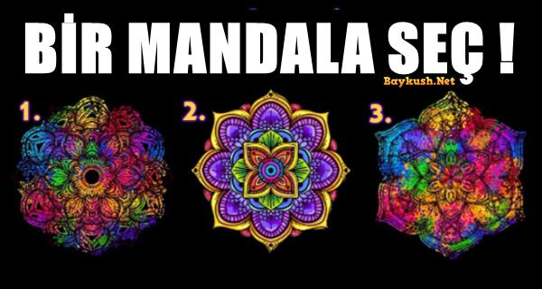 MANDALA-SEC.png