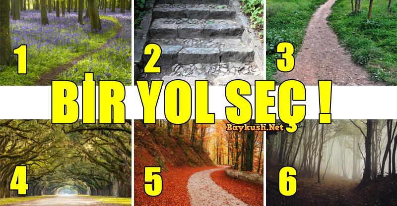 YOL-SEC-1.jpg